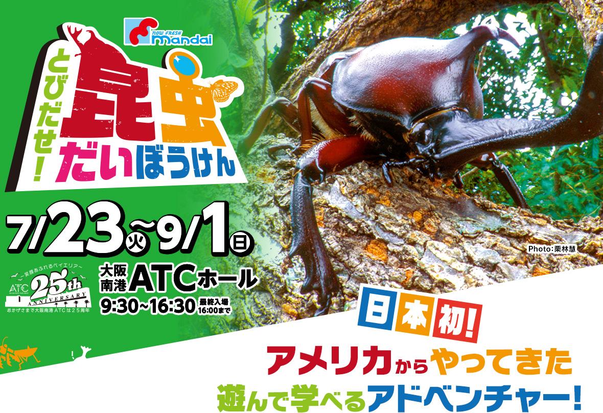 「マンダイプレゼンツ とびだせ!昆虫だいぼうけん」は2019年7月23日(火)~9月1日(日)大阪南港ATCホールで開催!